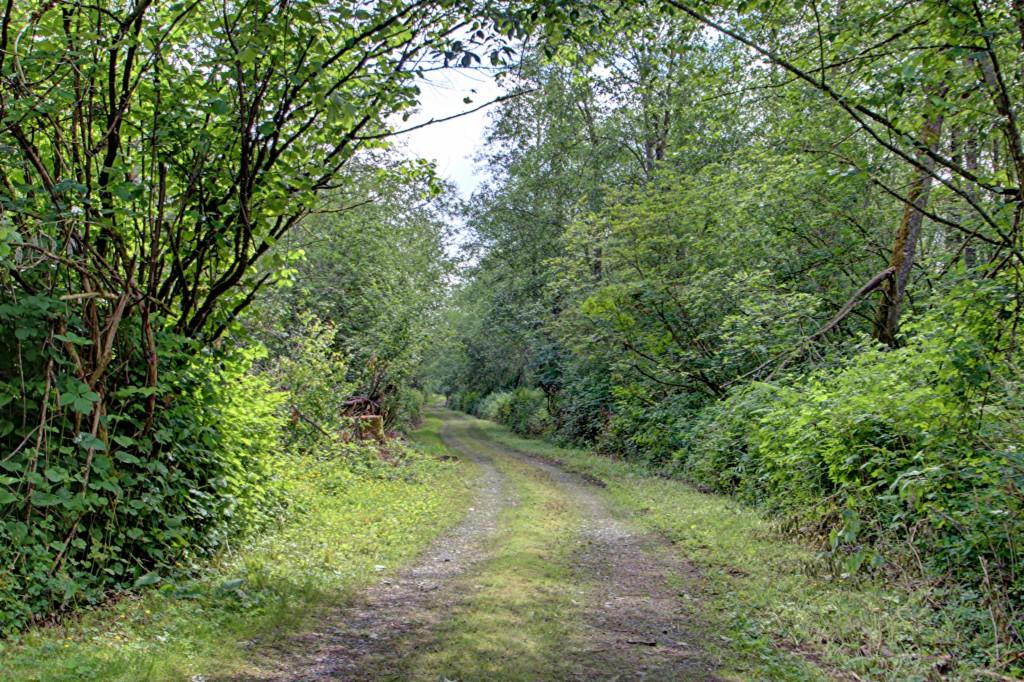 Photo of 9579 Delta Line Road  Blaine  WA