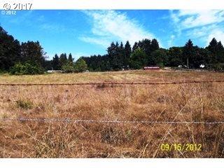 1095 Mt Vernon Cemetery Rd, Springfield, Oregon