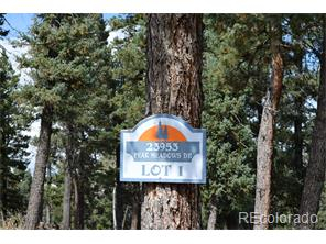 23953 Peak Dr., one of homes for sale in Conifer