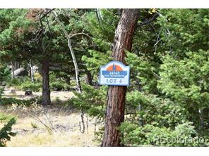 24143 Peak Dr., Conifer, Colorado