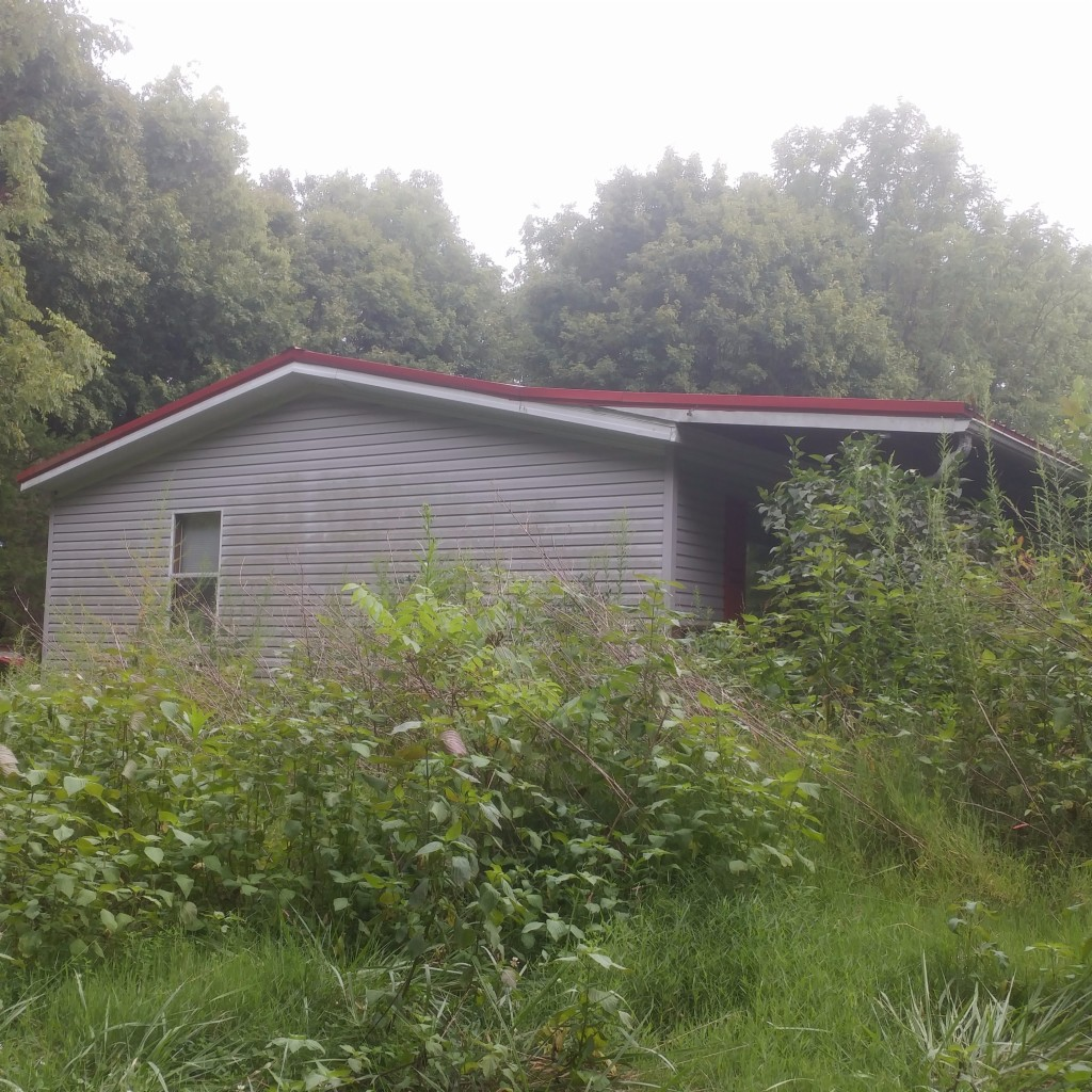 Photo of 1177 Smith Road  Adairville  KY