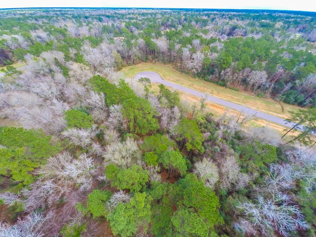 28511 Tallow Rock Lane Huffman, TX 77336