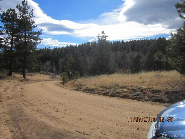 29315 S. Sunset Trail Conifer, CO 80433