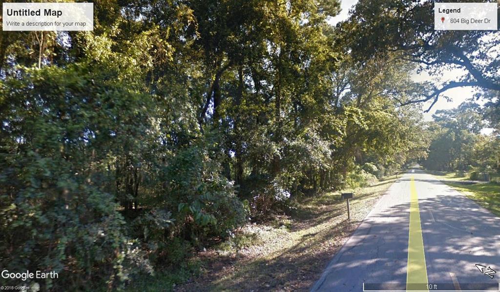 .59 Acre Big Deer Drive Crosby, TX 77532
