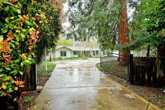 1371 Pine Tree Drive Alamo, CA 94507