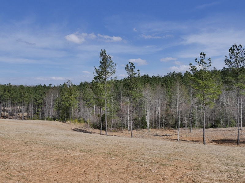 Lot 229 Thirteen Hundred, Blairsville in Union County, GA 30512 Home for Sale