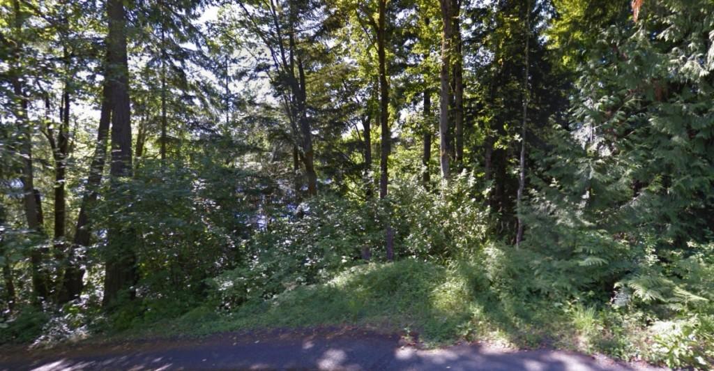 17XXX E Lake Desire Dr SE, Renton in King County, WA 98058 Home for Sale