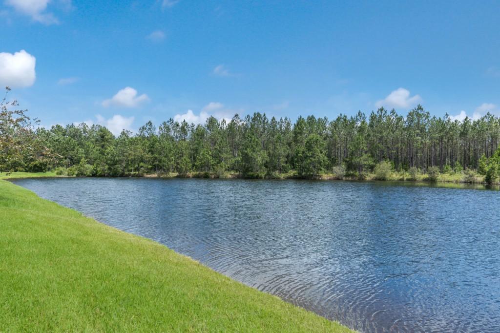 1425 Canopy Oaks Drive, Orange Park, Florida