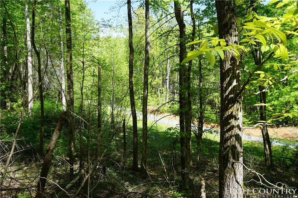 Lot 7 Austin Valley Drive (austin Creek) Lenoir, NC 28645