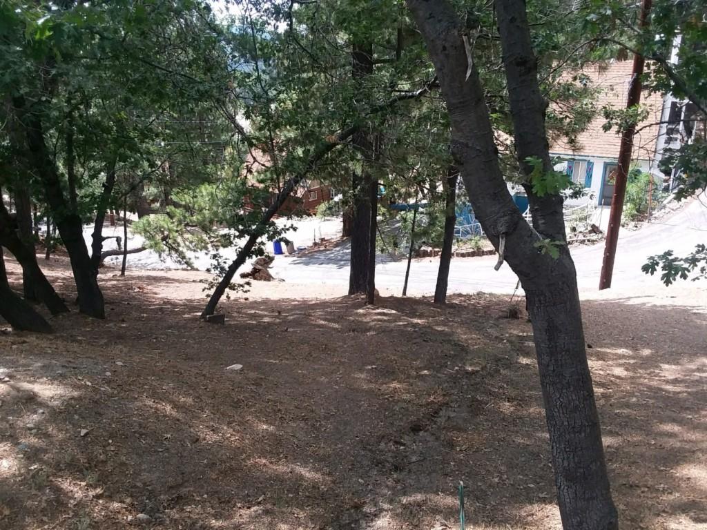 0 Lone Pine Arrowbear, CA 92382