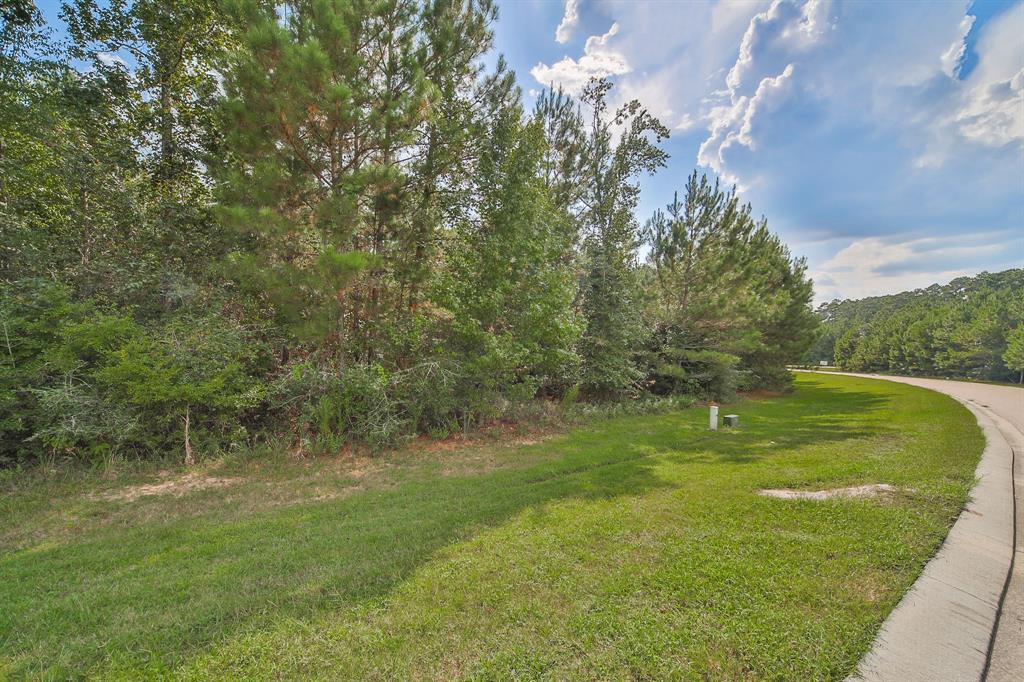 26211 Huntsworth Lane, Montgomery, Texas