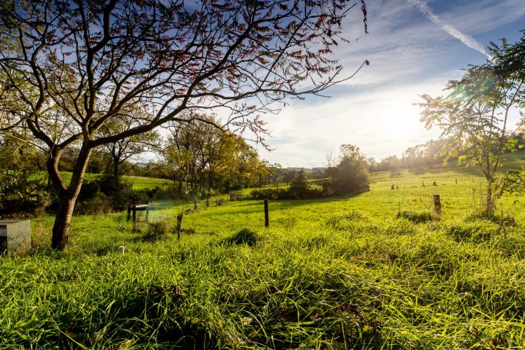 100 Hickory Hills Lane - photo 26