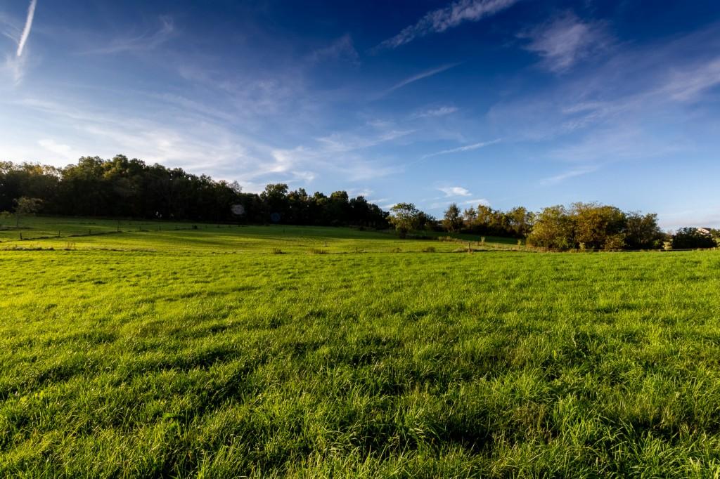 100 Hickory Hills Lane - photo 27