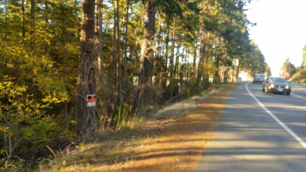 xxx NE Goldie Rd, one of homes for sale in Oak Harbor