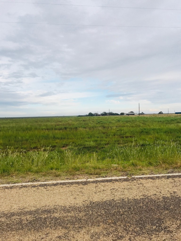 2-LOT FARM ROAD 1730 NEW HOME, TX 79383