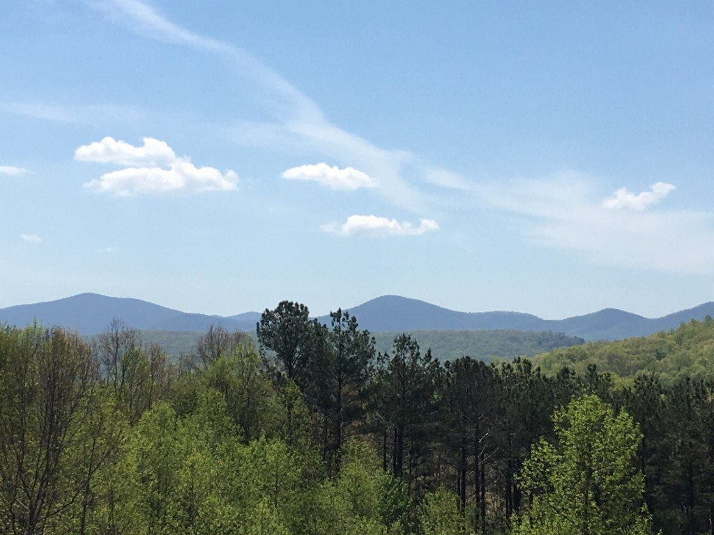 Lot 99 The Hills Lane, Blairsville in Union County, GA 30512 Home for Sale