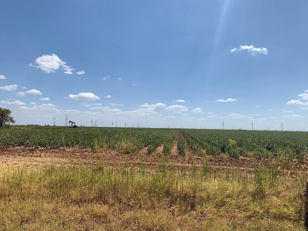 0 E Farm Road 40 Highway, Lubbock, Texas