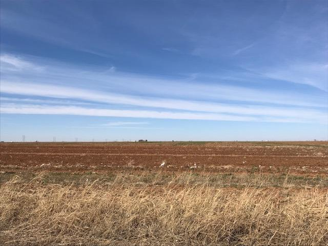One of Lubbock Homes for Sale at 1822 Farm Road 1729