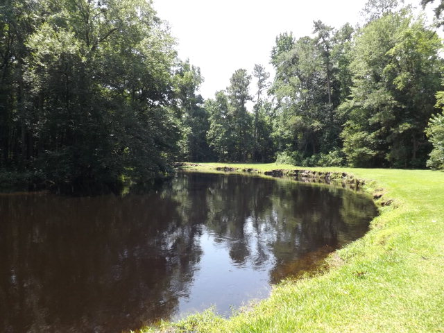 133.8 acres Wagram, NC