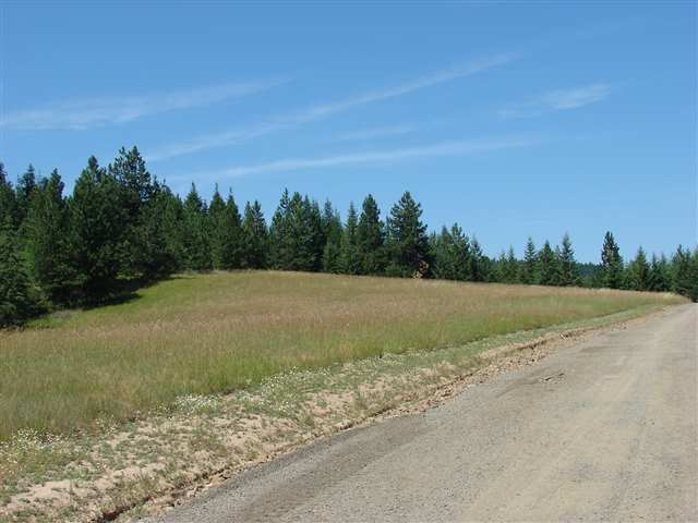 Real Estate for Sale, ListingId: 19477476, Lenore, ID  83541
