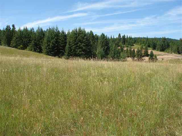 Real Estate for Sale, ListingId: 19477474, Lenore, ID  83541