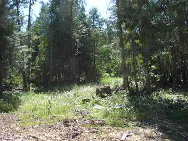 Real Estate for Sale, ListingId: 19477477, Lenore, ID  83541