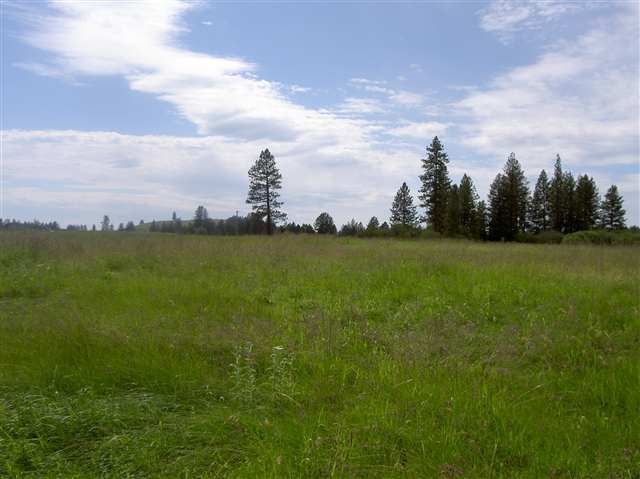 Real Estate for Sale, ListingId: 24199476, Kamiah, ID  83536