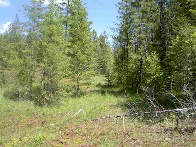 Real Estate for Sale, ListingId: 24199468, Kamiah, ID  83536