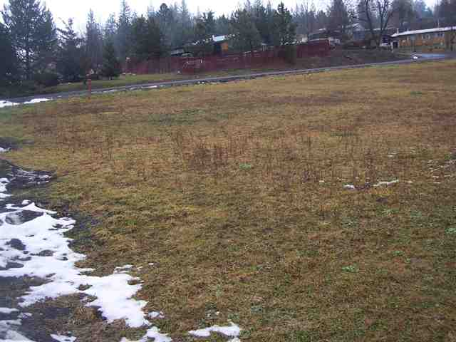primary photo for Block  3 Lot 1 Valley View Subdivision Tract ll, Kamiah, ID 83536, US