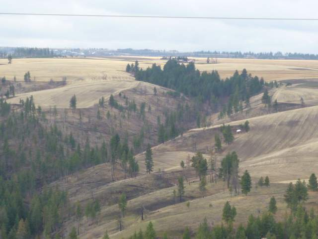 Image of Acreage for Sale near Pomeroy, Washington, in Garfield county: 102.70 acres