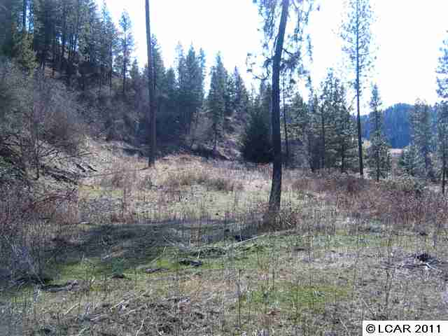 Real Estate for Sale, ListingId: 24199465, Kamiah, ID  83536