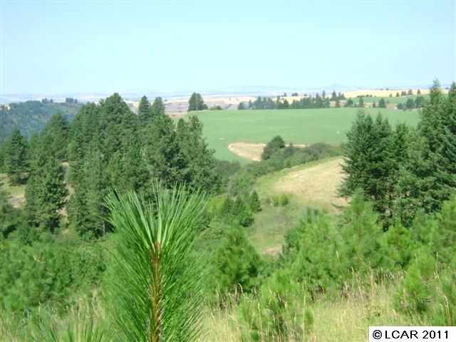 40 acres in Kendrick, Idaho