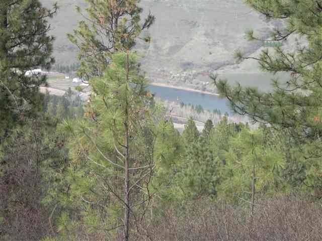 165 acres in Peck, Idaho