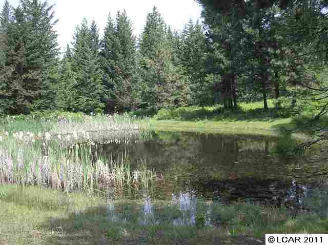 30 acres in Kendrick, Idaho