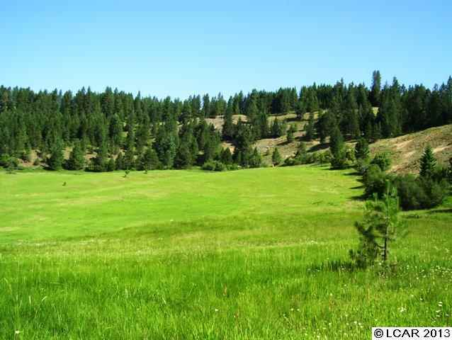 Real Estate for Sale, ListingId: 24390965, Weippe, ID  83553