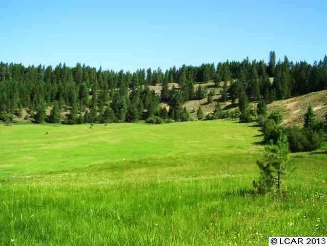 Real Estate for Sale, ListingId: 24390964, Weippe, ID  83553
