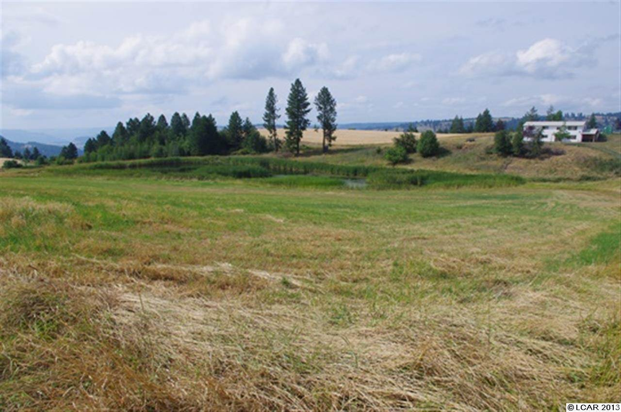 24 acres in Orofino, Idaho