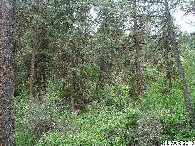 TBD Quailwood Estates Sub-Div Kooskia, ID 83539