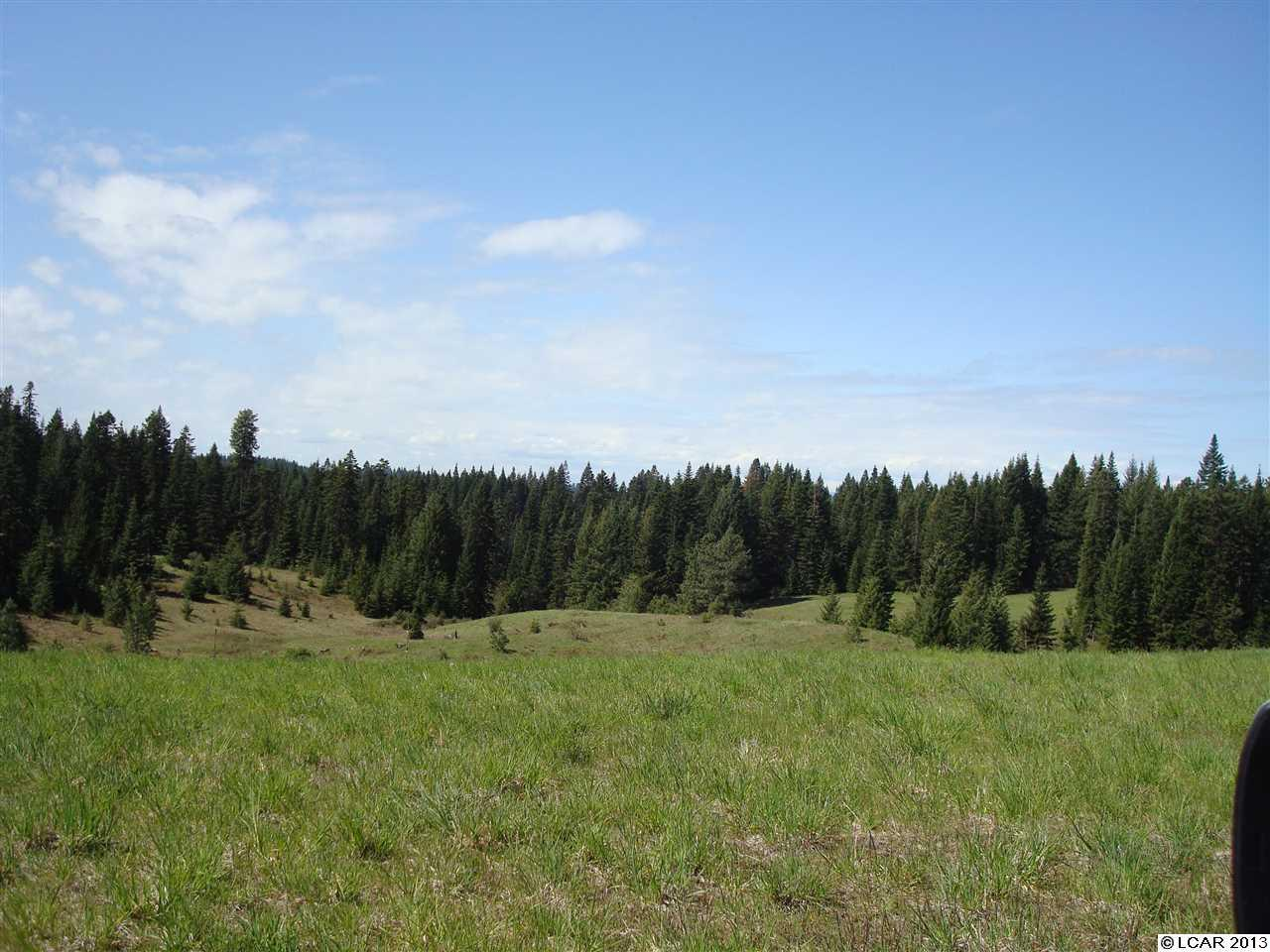 90 acres by Kamiah, Idaho for sale