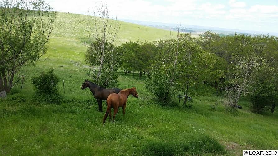 59.5 acres Waha, ID