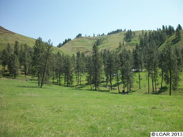 Real Estate for Sale, ListingId: 35160582, Elk City, ID  83525