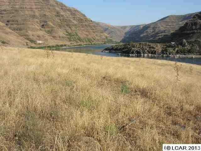 Parcel #13 Snake River Rd Asotin, WA 99402