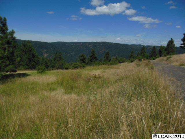 Lakeview Road 5 Orofino, ID 83544