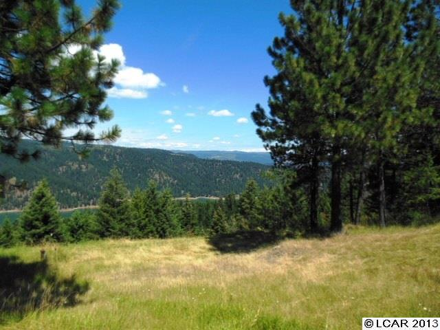 Lakeview Road 2 Orofino, ID 83544