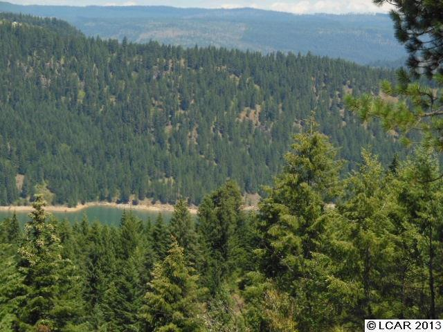 Lakeview Road 2-5 Orofino, ID 83544