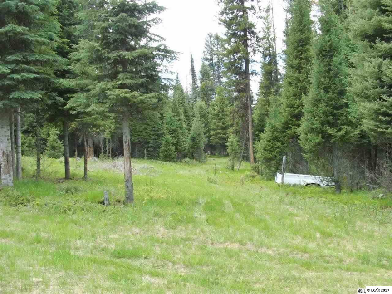 TBD Hidden Springs Rd. Elk City, ID 83525