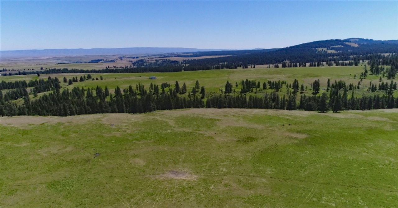 primary photo for 30070 Cloverland Road, Asotin, WA 99402, US