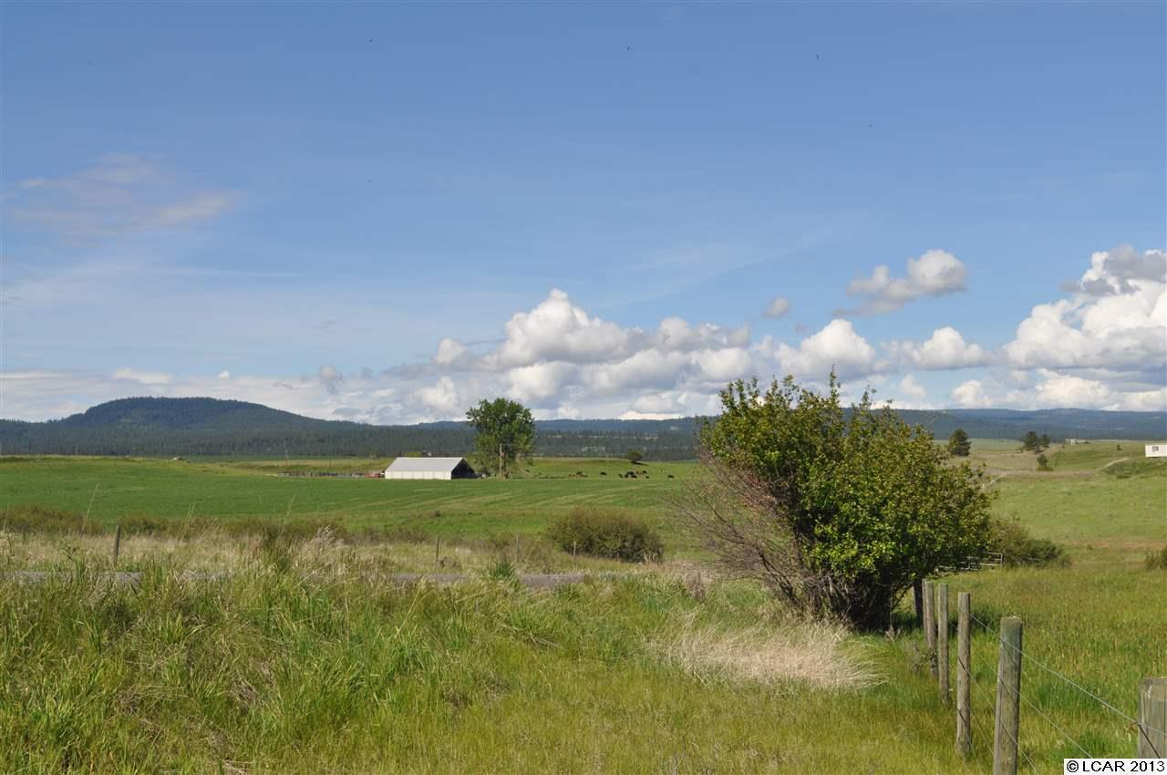 Tbd Sangster Road Anatone, WA 99401