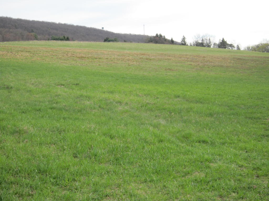Image of Acreage for Sale near Pottsville, Pennsylvania, in Schuylkill county: 80.00 acres