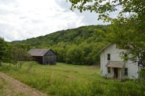 Real Estate for Sale, ListingId: 35610939, Timblin,PA15778